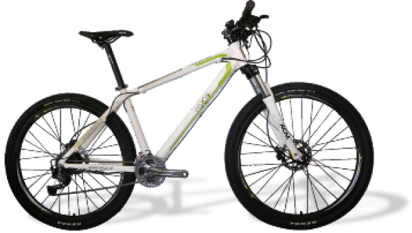 e-mountain bike 29